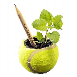 Sprout Bleistift gespitzt, Standardausführung, Basilikum